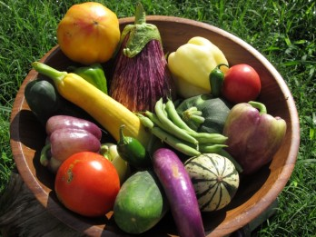 bounty-of-vegetables